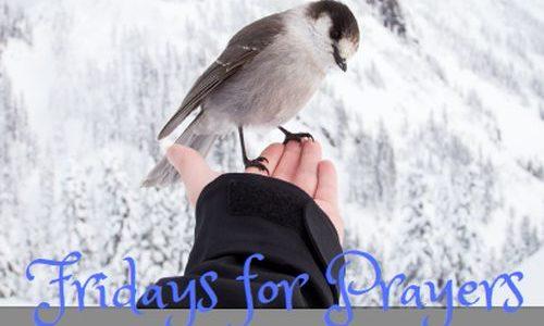 Fridays for Prayers